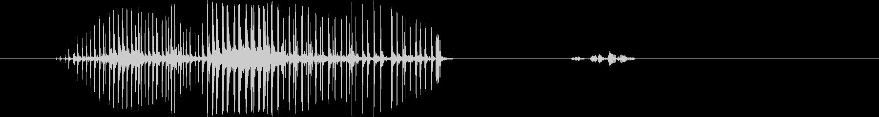 コンゴウインコ。ディープスロートバ...の未再生の波形