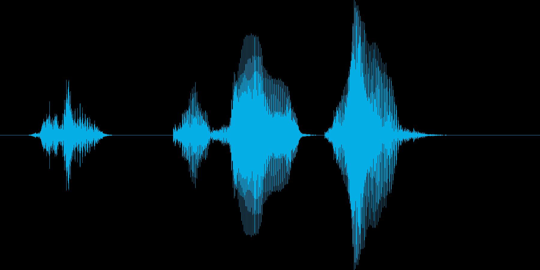 チェックメイト(男の子)の再生済みの波形