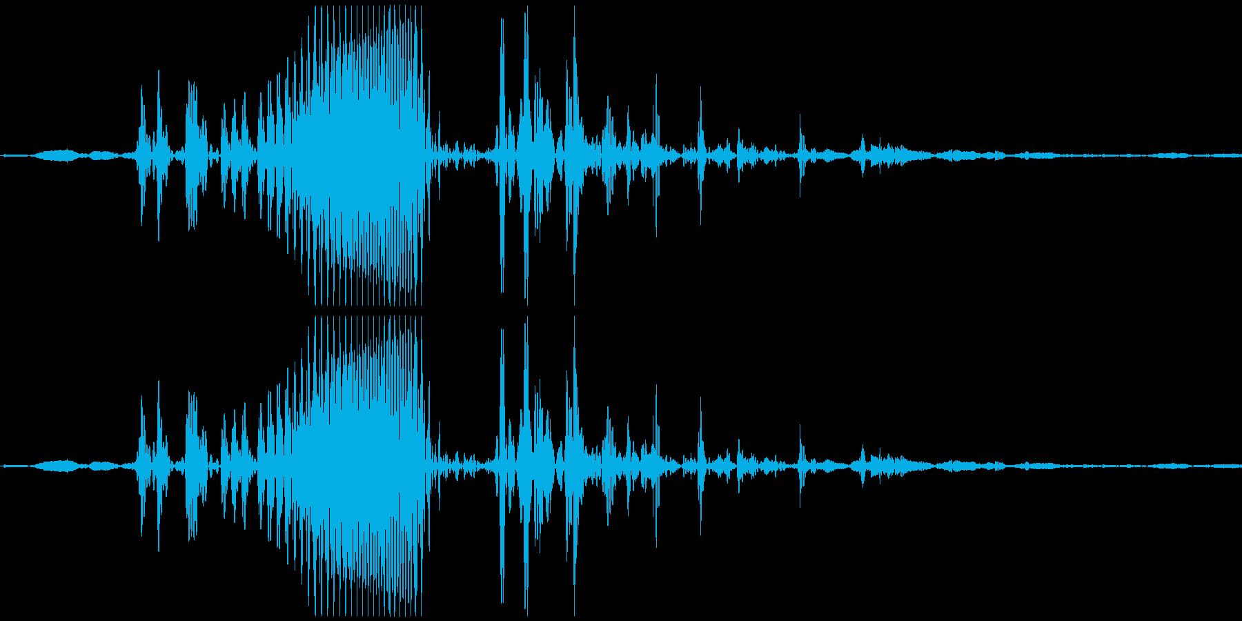 ゴクン 喉の音2の再生済みの波形