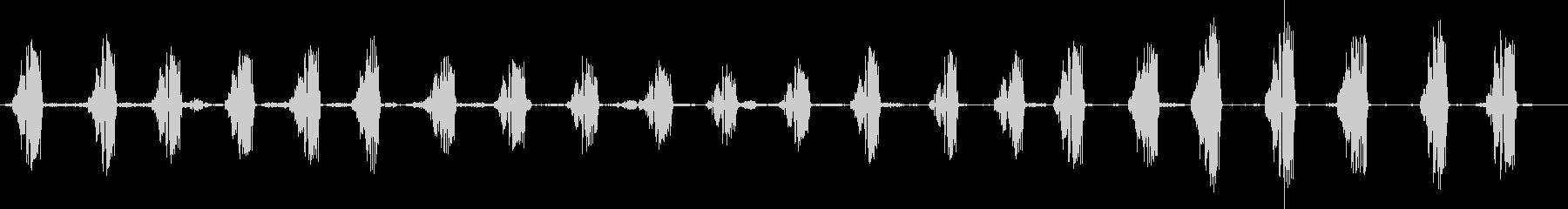 レン、ハウスチャープ、ミュージカル...の未再生の波形