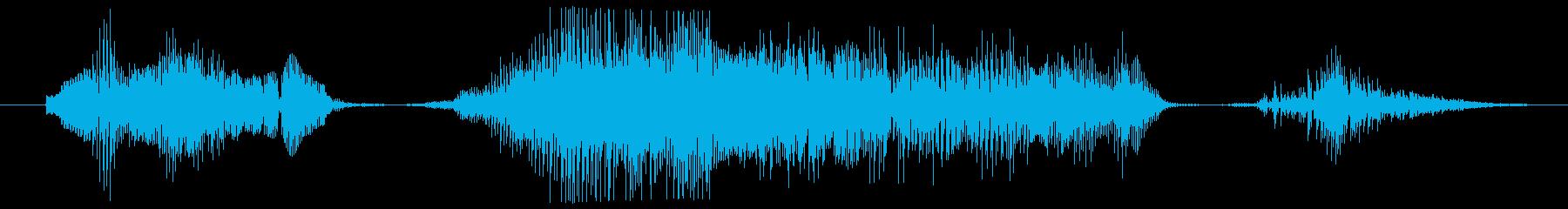 鳴き声 男性ダイグリング16の再生済みの波形