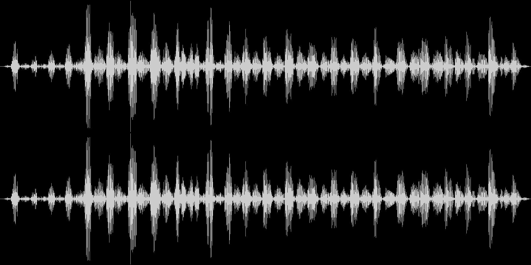 ゴロゴロ(猫が喉を鳴らす)の未再生の波形