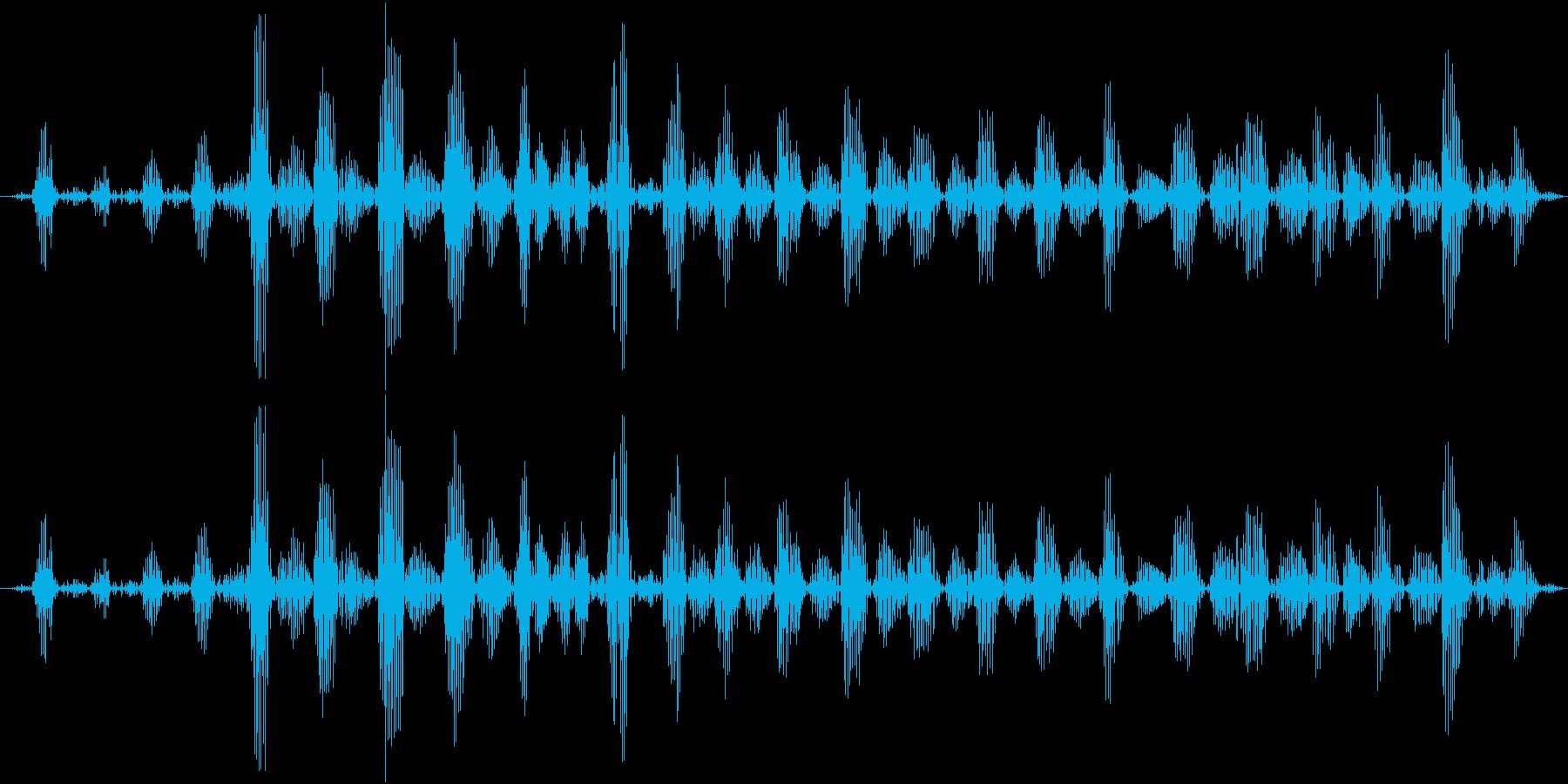 ゴロゴロ(猫が喉を鳴らす)の再生済みの波形