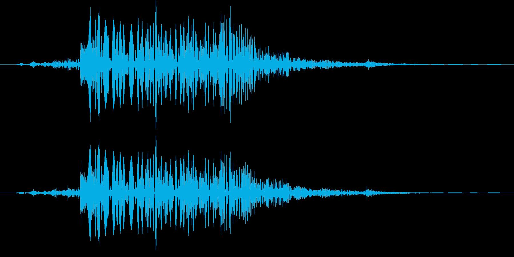 水ドポンの再生済みの波形