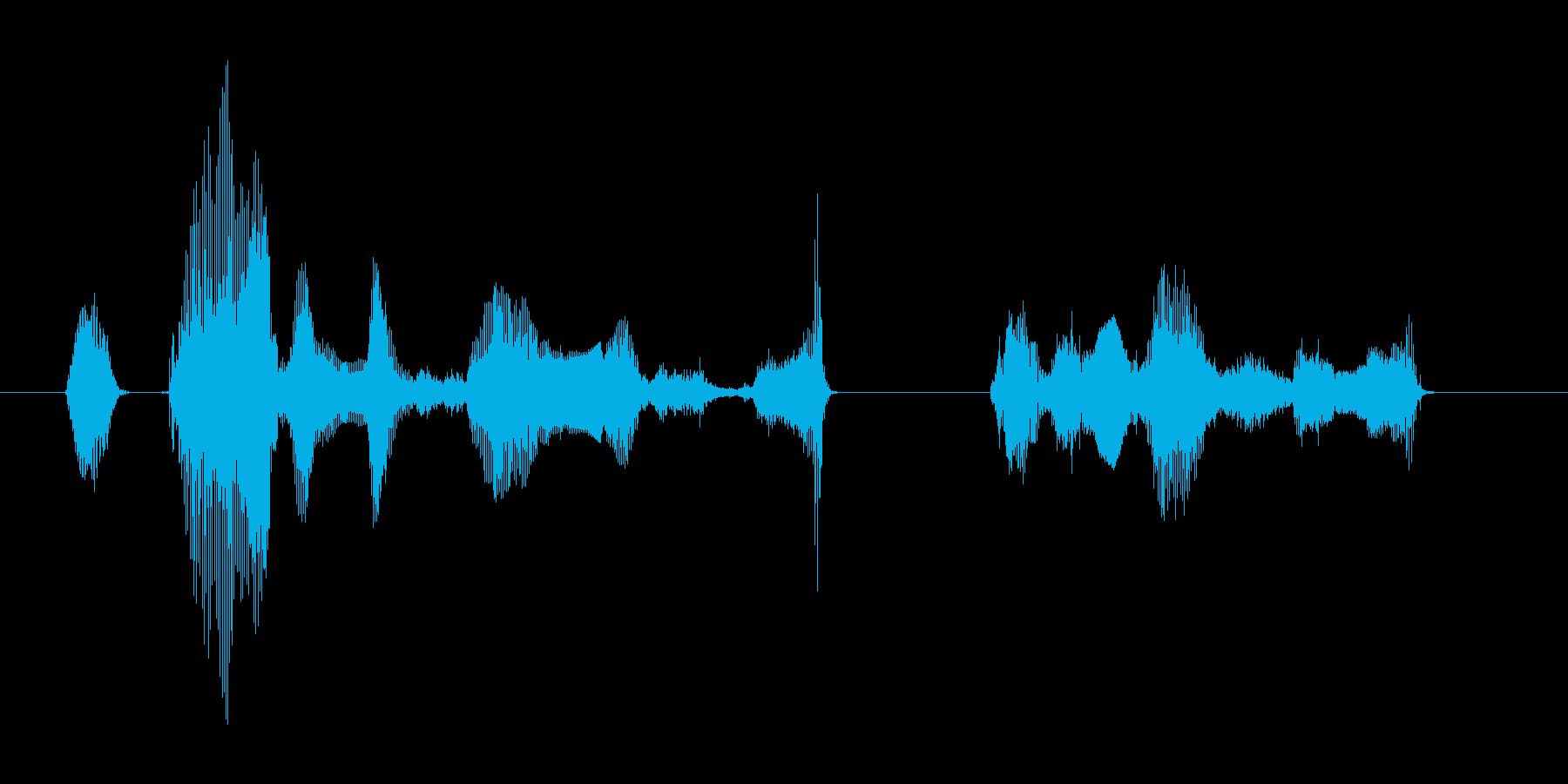 オカエリナサイマセ ゴシュジンサマの再生済みの波形