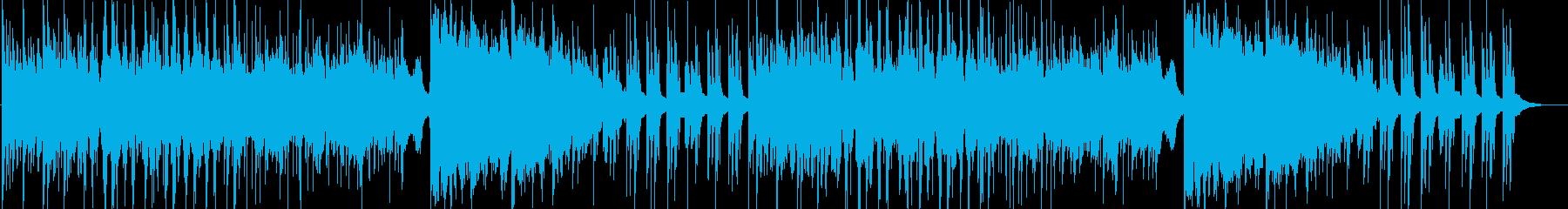 森・大地の景色-アウトドア・星・BGMの再生済みの波形