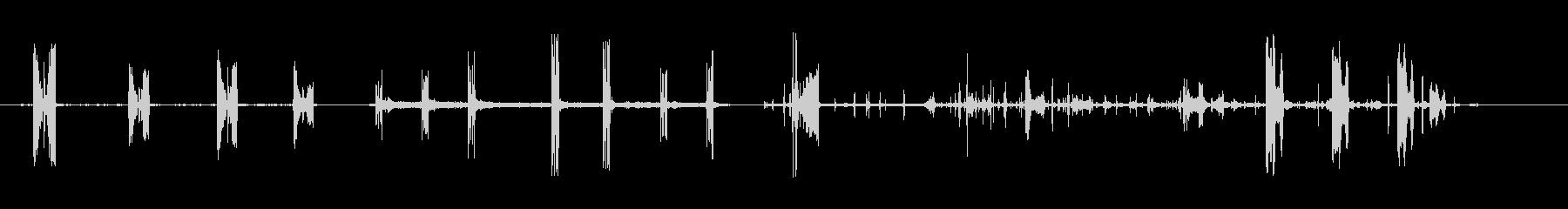 ヤマウズラグリルの未再生の波形