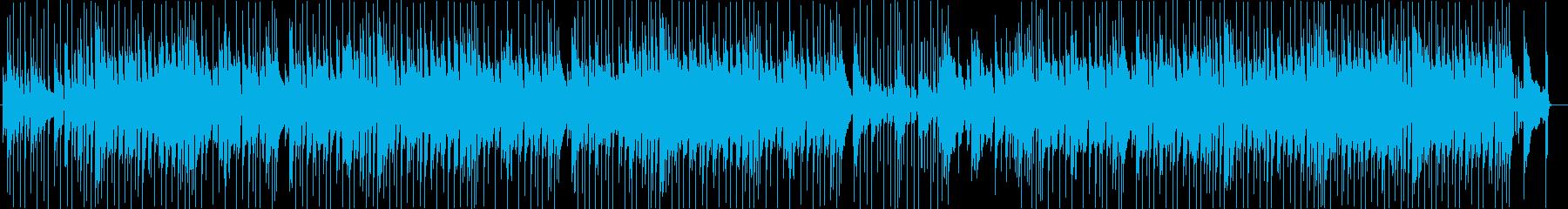 陽気な70'sスワンプロック南部アメリカの再生済みの波形