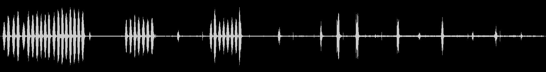 熱帯の鳥:大声で鳴くの未再生の波形