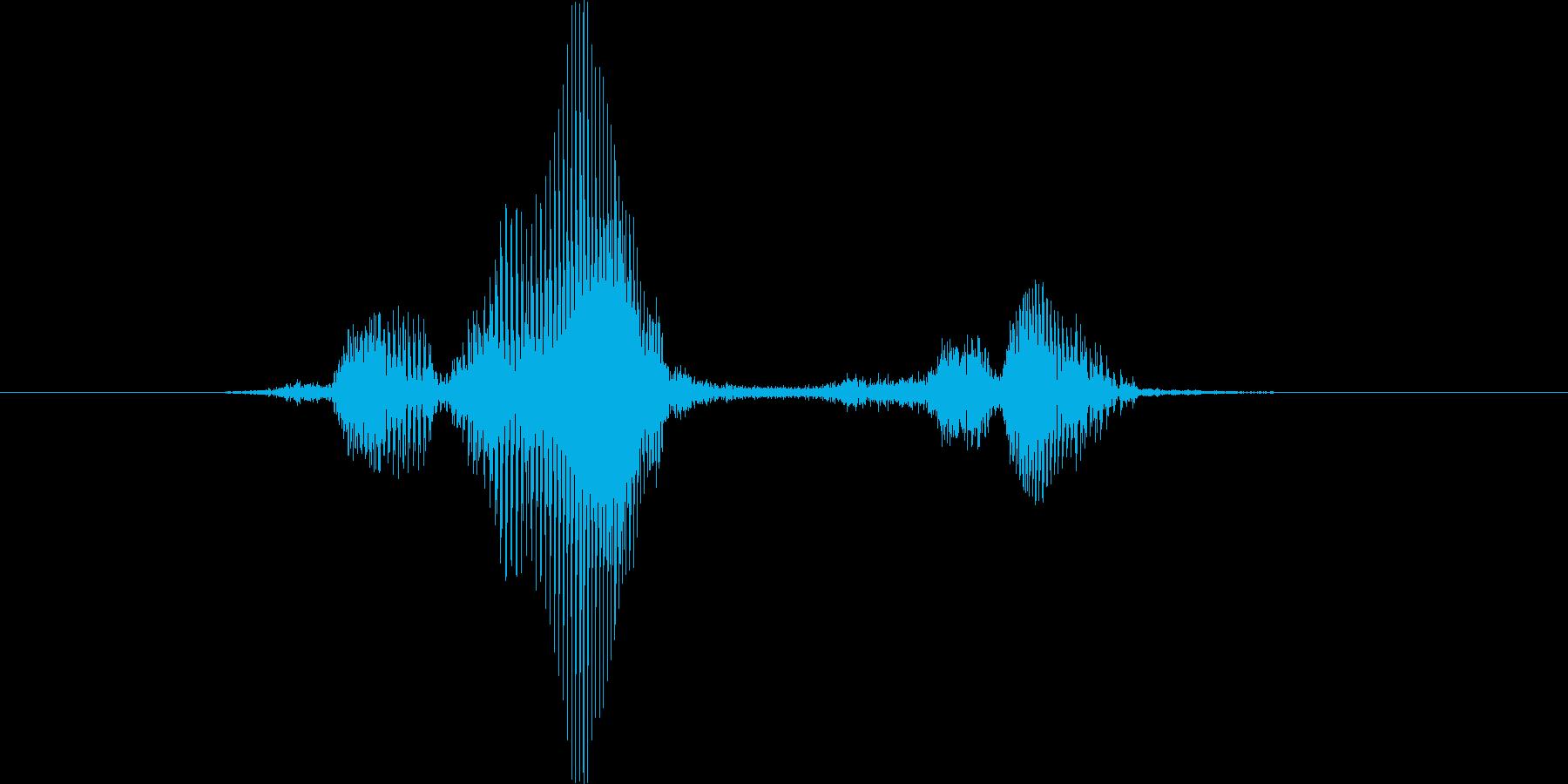 フラッシュの再生済みの波形
