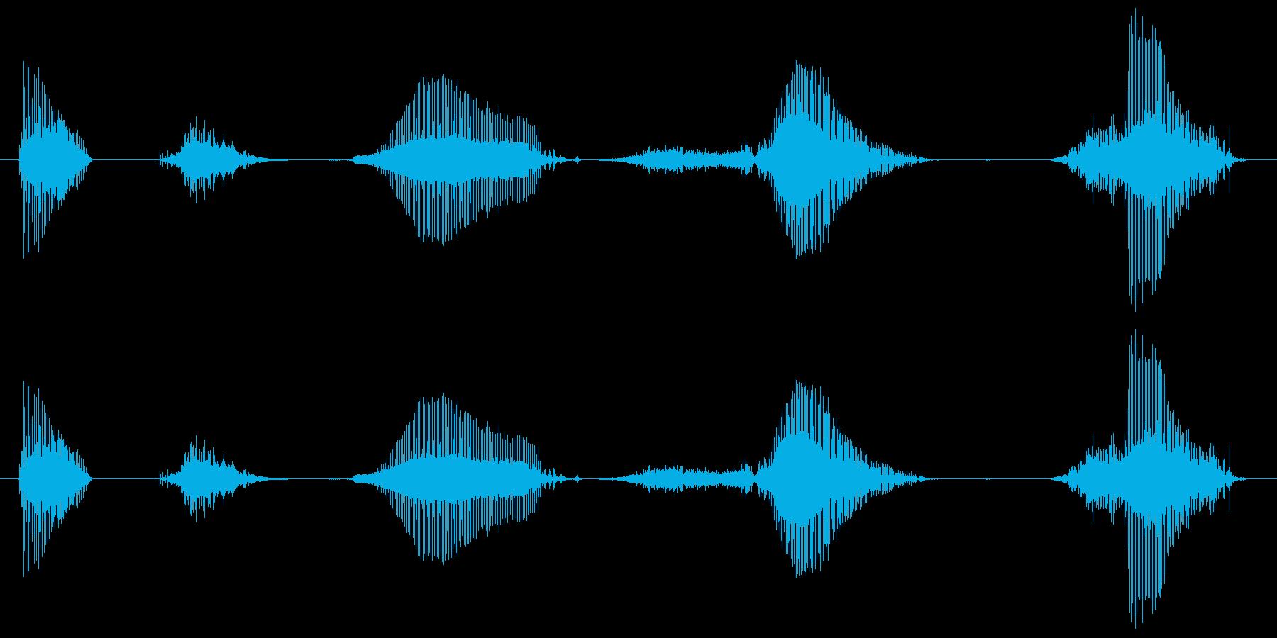 【合図】いち、に、さん、はい!(子供)の再生済みの波形