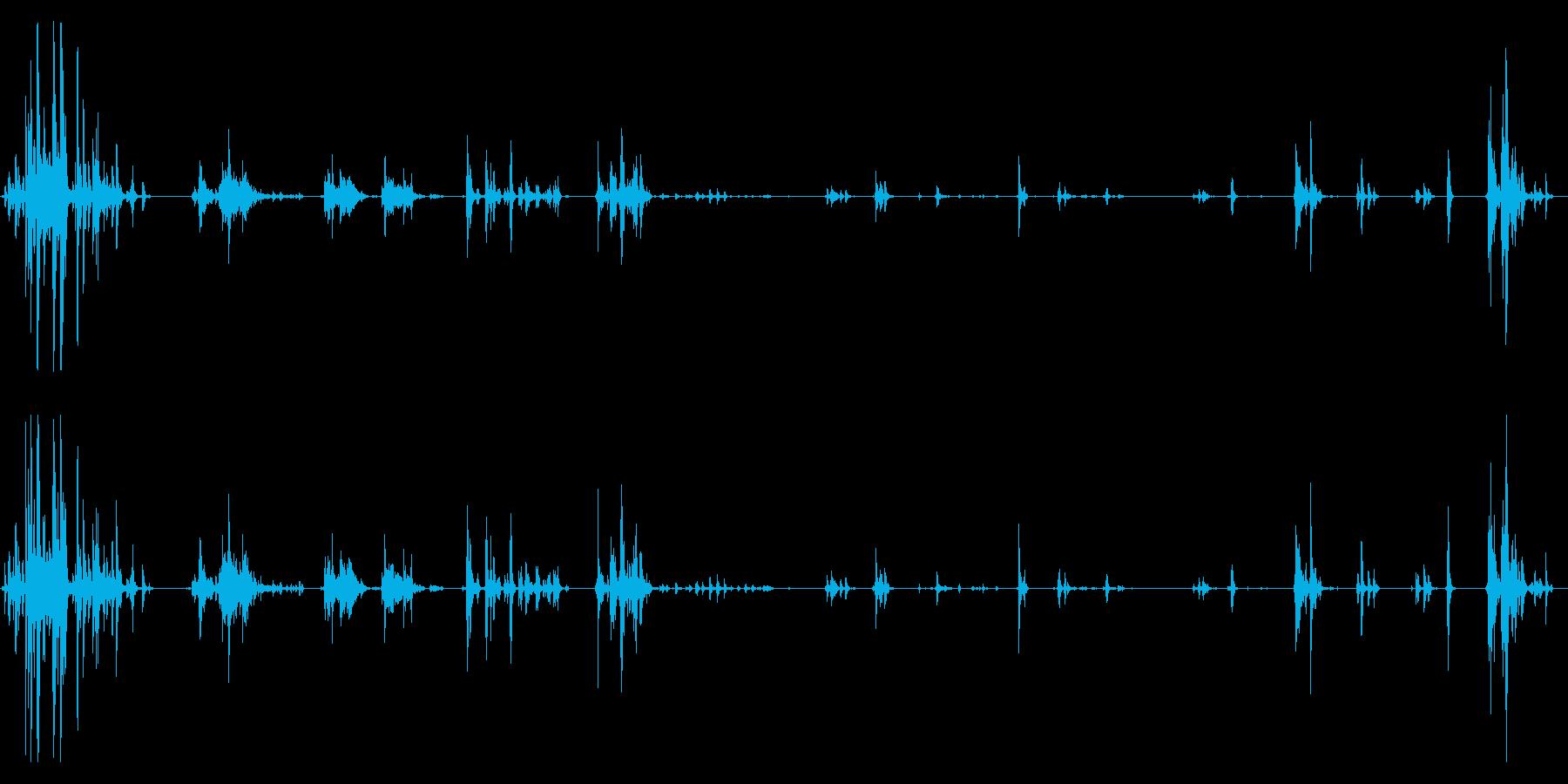 子猫が走ったり遊んだりしている音の再生済みの波形