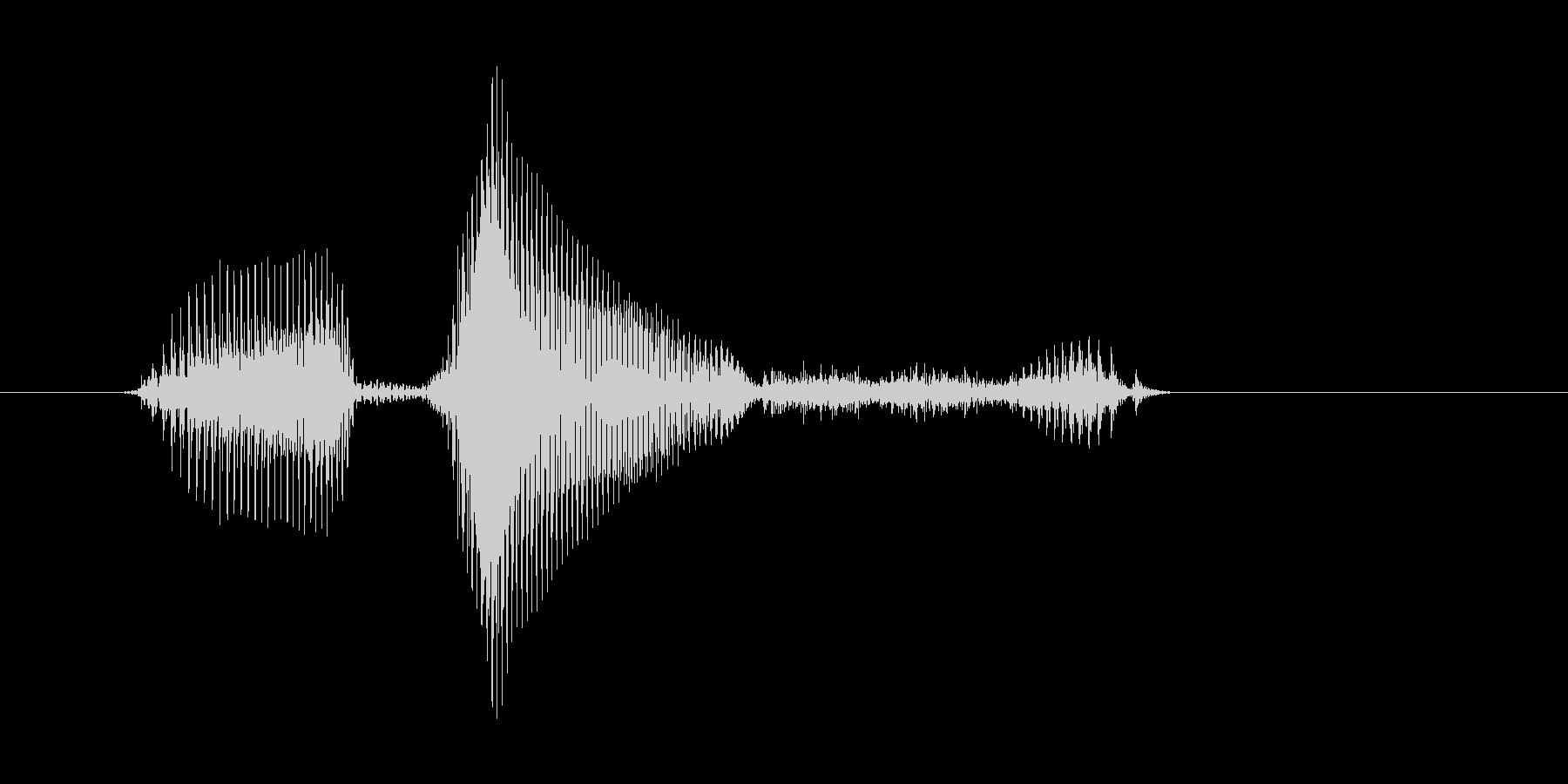リバース・Reverse(女性)の未再生の波形