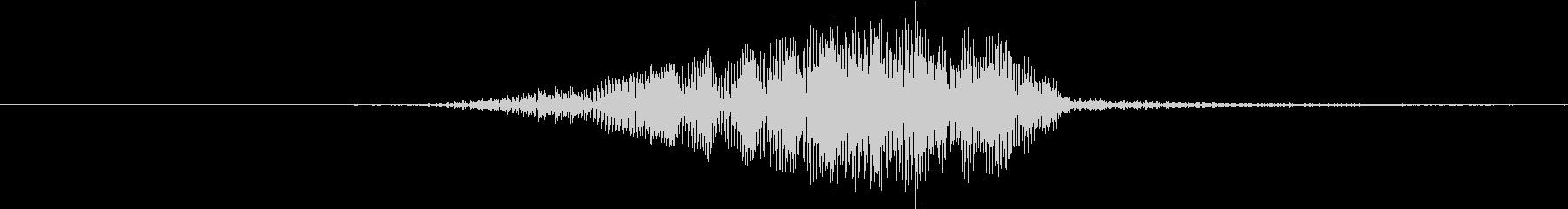 アフリカ灰色のオウム:短い甲高い声の未再生の波形
