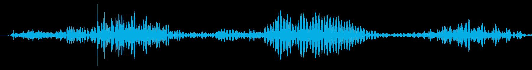 モンスター:フランジグロールコールの再生済みの波形