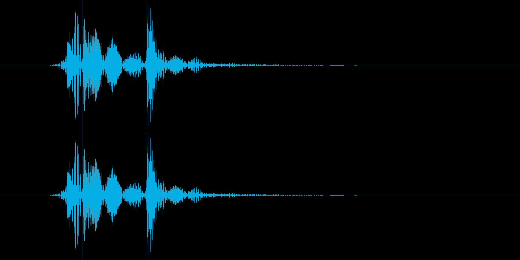パカの再生済みの波形