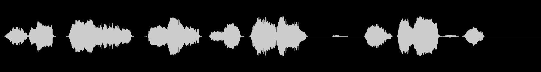 羊、いくつか; Baas、中程度の視点。の未再生の波形
