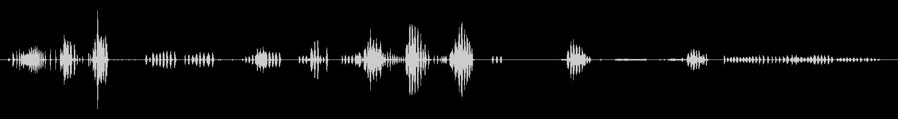 ギース、アウトドア、バード; DI...の未再生の波形