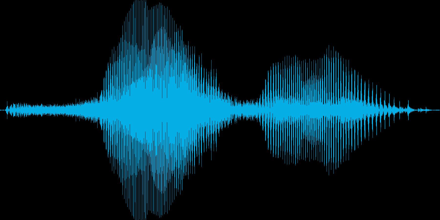 ふむふむの再生済みの波形