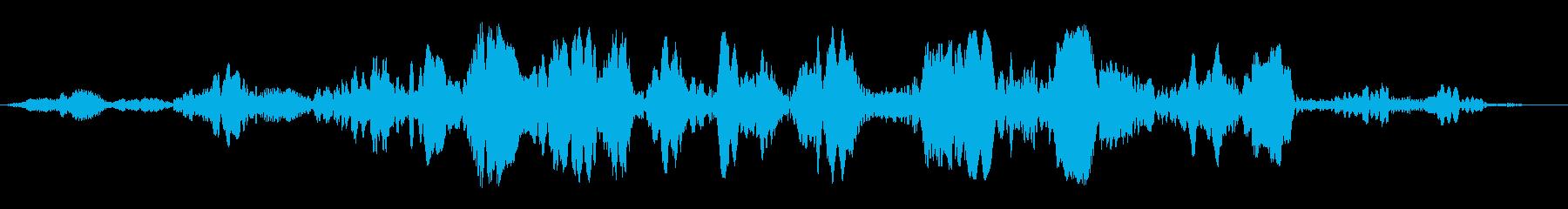 プワプワプワ(回転音)の再生済みの波形