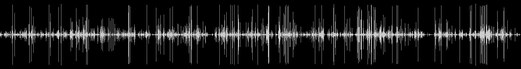 猫がキャットフードを食べてる音01の未再生の波形