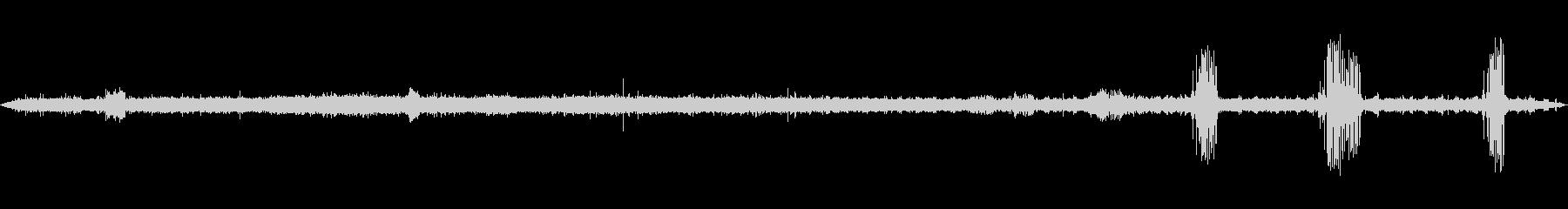 環境音 アフリカのブッシュ鳥のスト...の未再生の波形