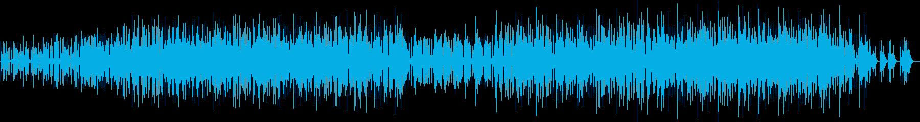 パーカッシブなミニマルファンクの再生済みの波形
