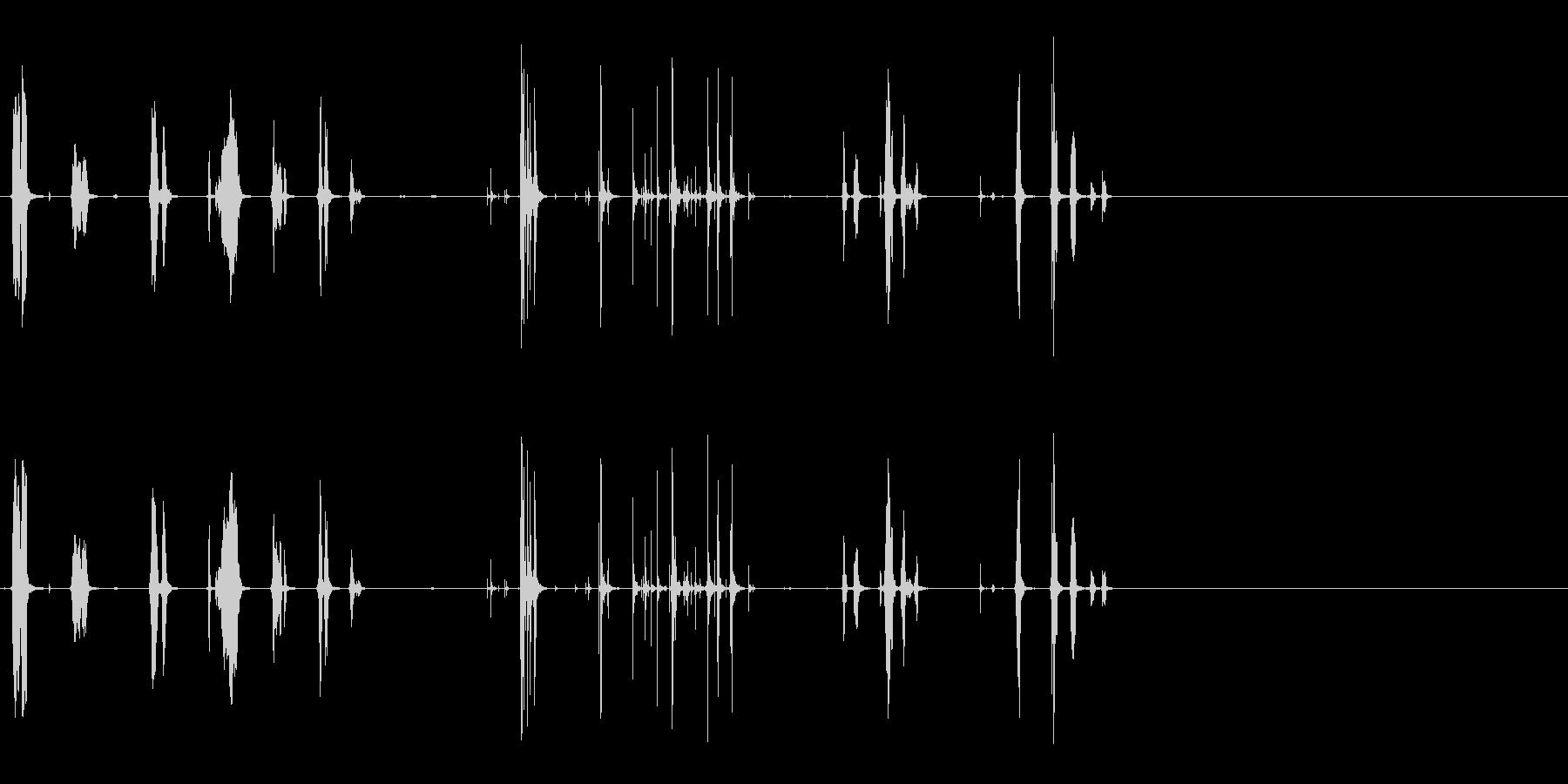 リスの未再生の波形