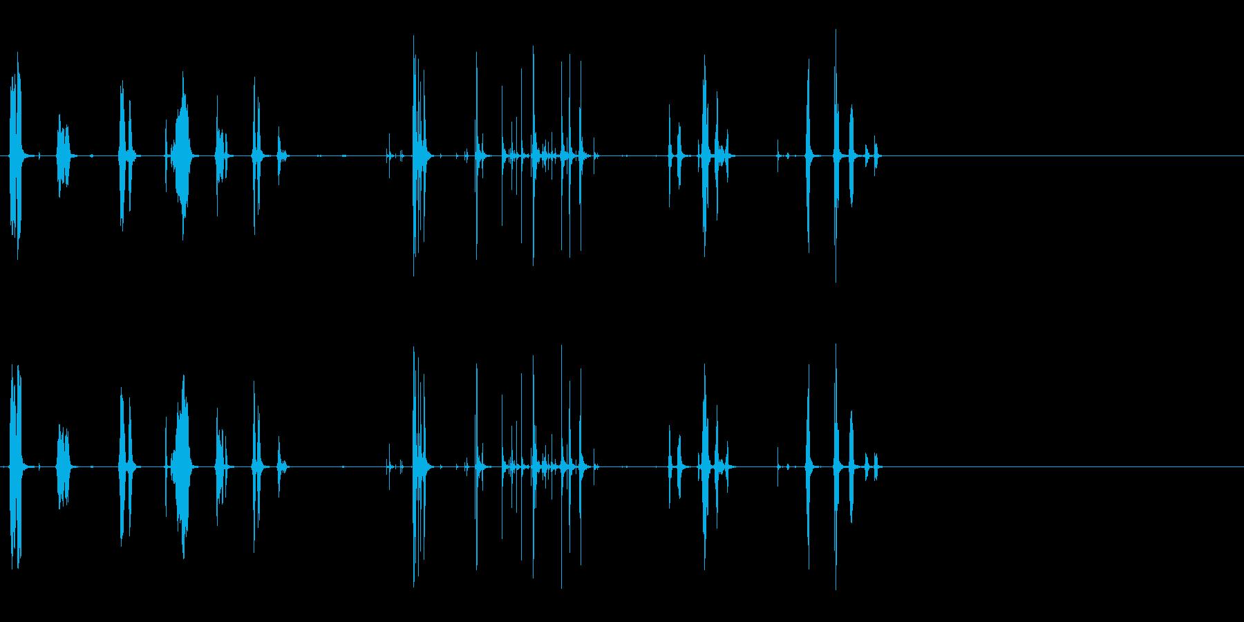 リスの再生済みの波形