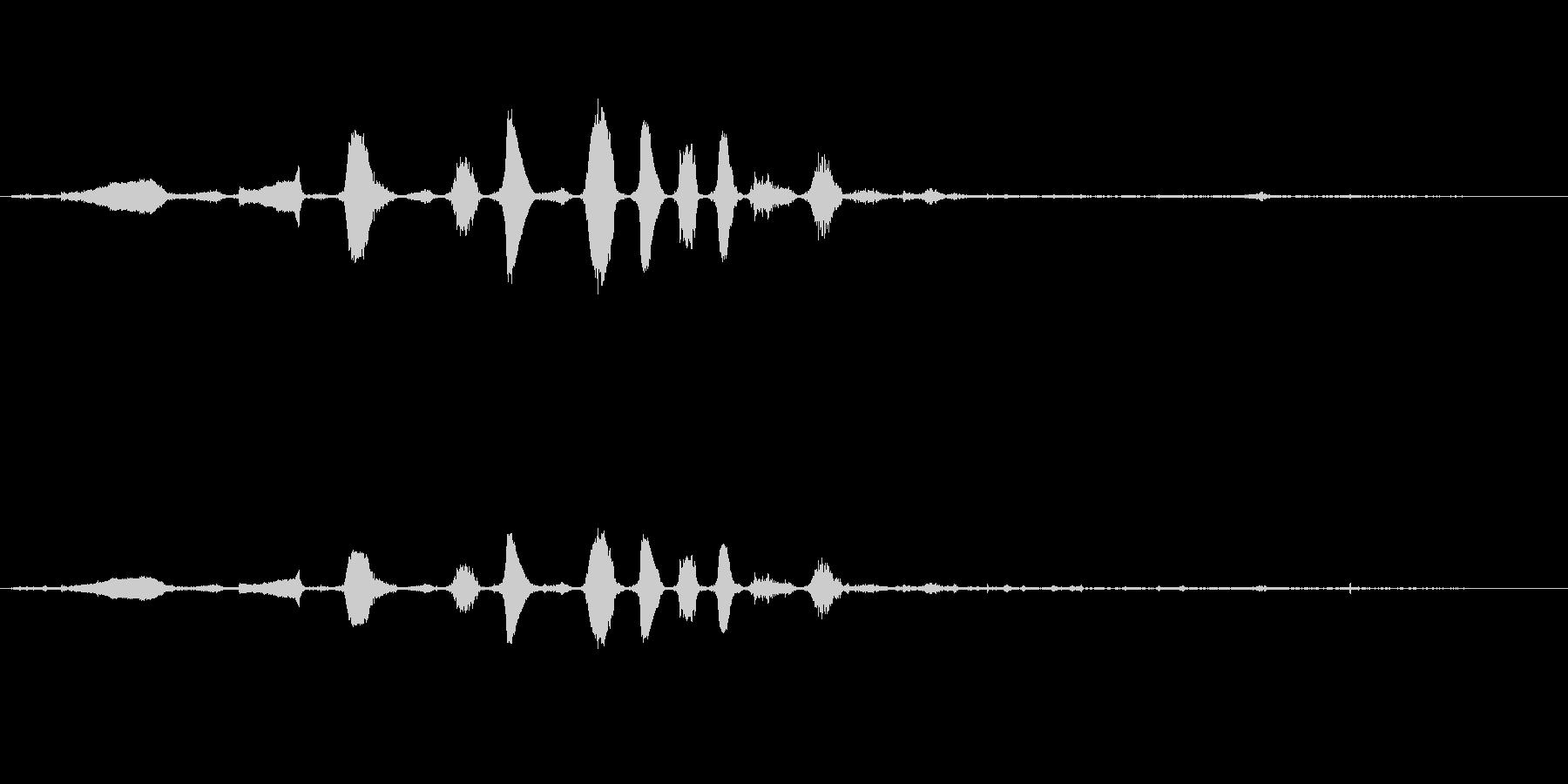 ロバ ブレイレゾナント04の未再生の波形