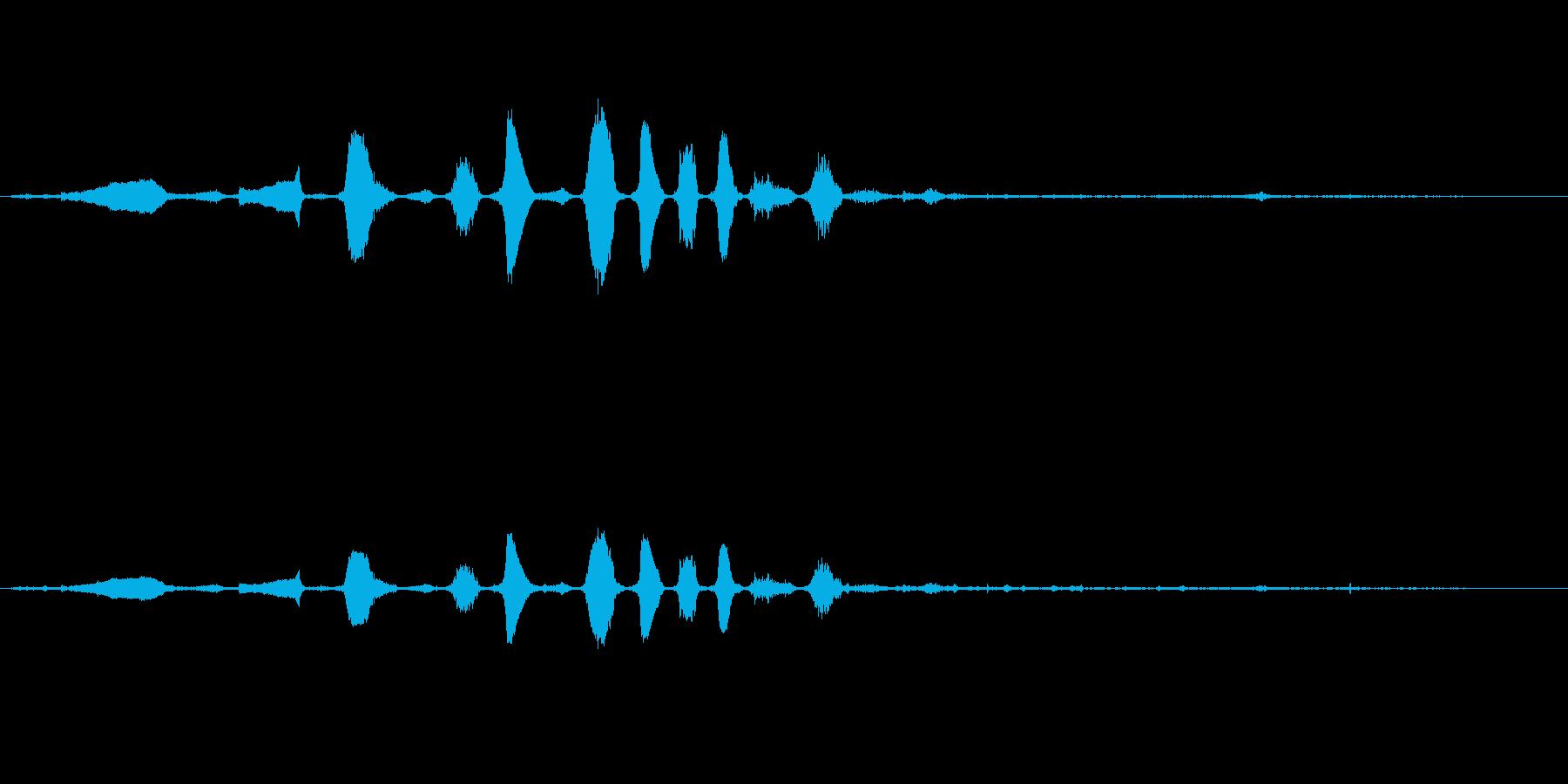 ロバ ブレイレゾナント04の再生済みの波形