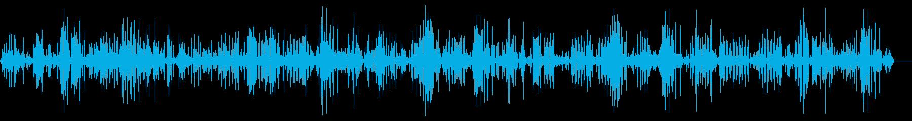 鳥4の再生済みの波形