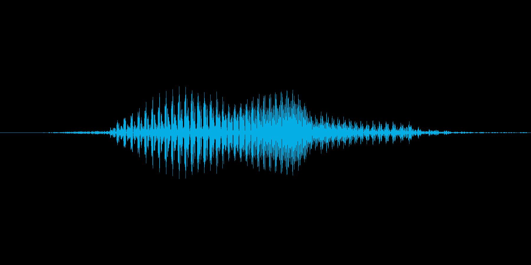 「はい!」11歳男の子の再生済みの波形