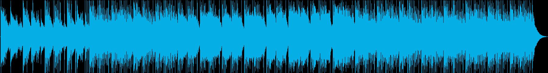 acoustic musicの再生済みの波形