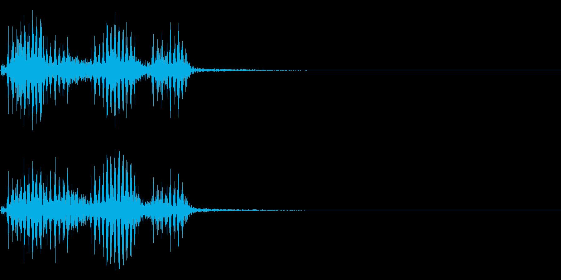 【生録音】フラミンゴの鳴き声 31の再生済みの波形