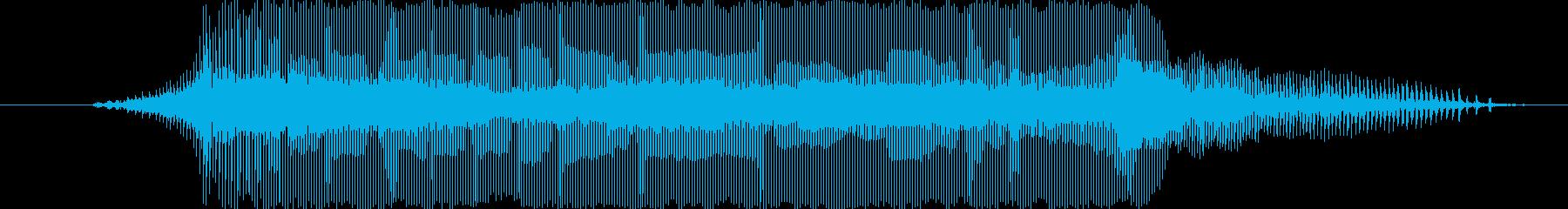 わーい!の再生済みの波形